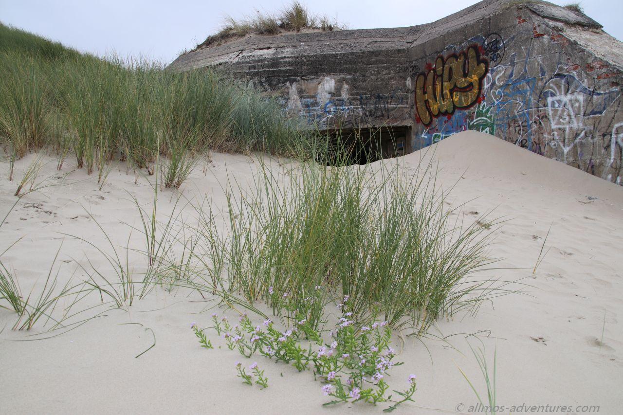 Bunker in den Dune de Perroquet in Bray-Dunes